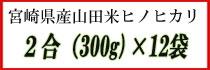 宮崎県産山田米ヒノヒカリ 2合×12