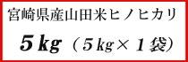 宮崎県産山田米ヒノヒカリ 5g×1
