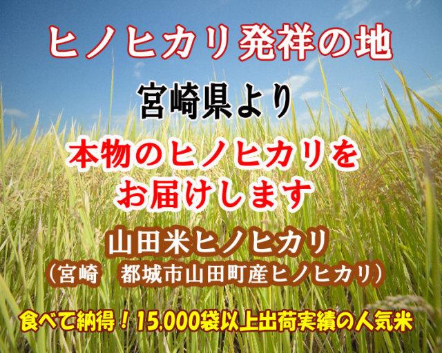 宮崎県産山田米ヒノヒカリ